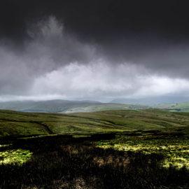 Lamps Moss, Cumbria